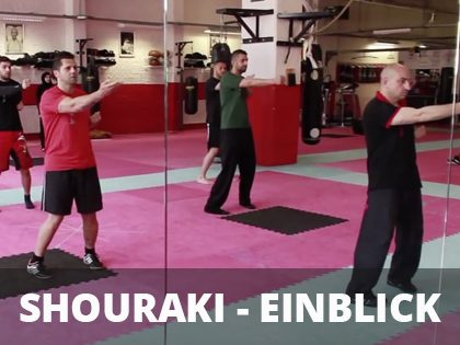 SHOURAKI – EINBLICK – VIDEO